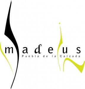 amadeus-in