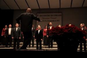 2012-12-14.amadeus.3